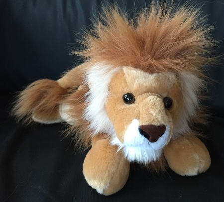 New Lion waiting for our little guy