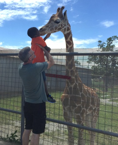 Have YOU ever been kissed by a giraffe?