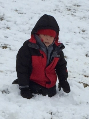 Snow Day 2-15-16 #13