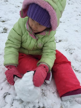 Snow Day 2-15-16 #7