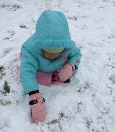 Snow Day 2-15-16 #8