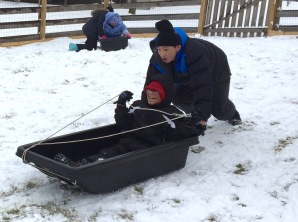 Snow Day 2-15-16 #9