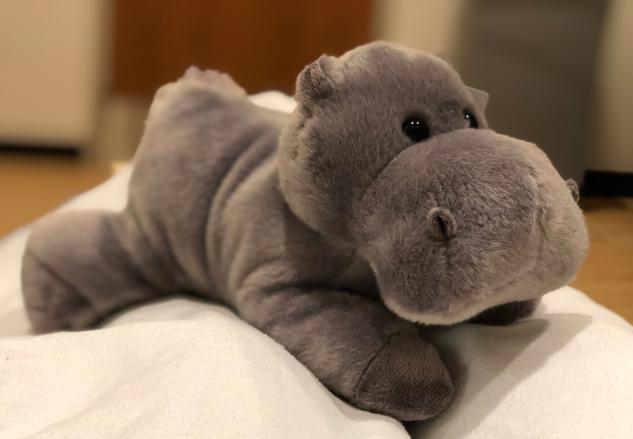 New Hippo